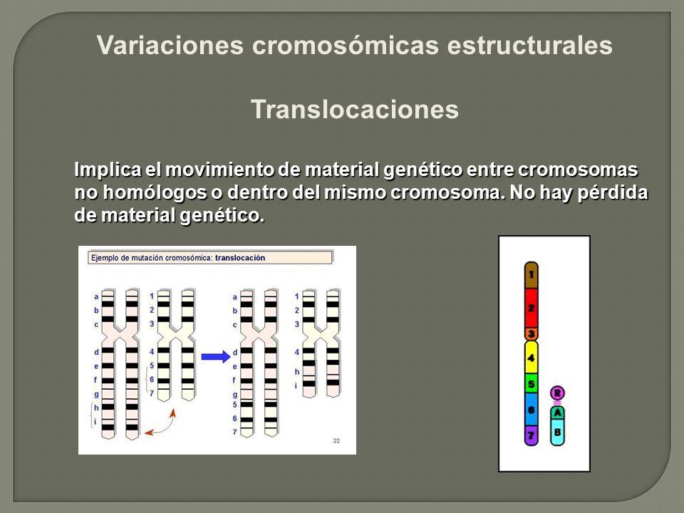Variaciones cromosómicas estructurales Translocaciones Implica el movimiento de material genético entre cromosomas no homólogos o dentro del mismo cro