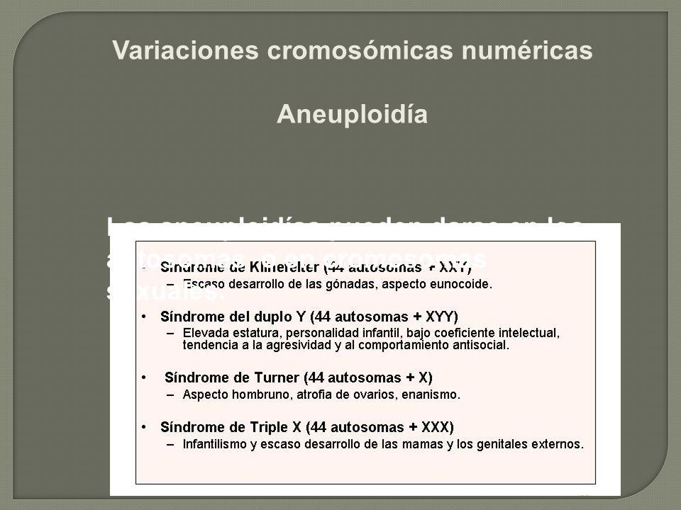 Variaciones cromosómicas numéricas Aneuploidía Las aneuploidías pueden darse en los autosomas o en cromosomas sexuales.