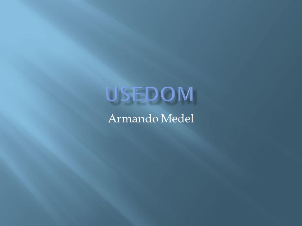 Armando Medel