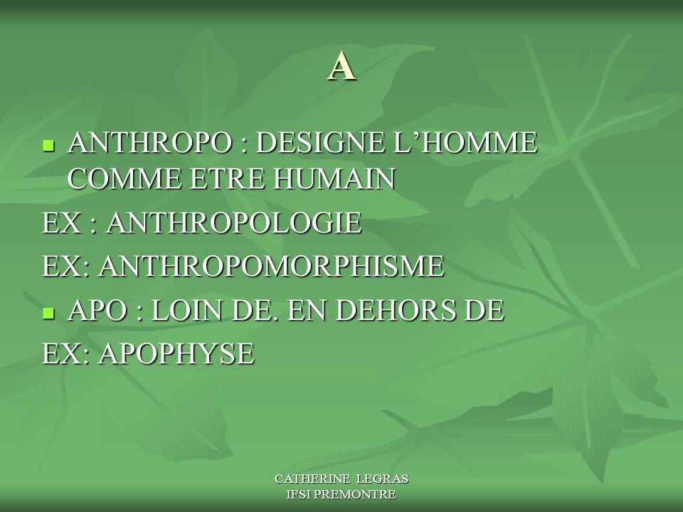 CATHERINE LEGRAS IFSI PREMONTRE A ANTHROPO : DESIGNE L'HOMME COMME ETRE HUMAIN ANTHROPO : DESIGNE L'HOMME COMME ETRE HUMAIN EX : ANTHROPOLOGIE EX: ANT