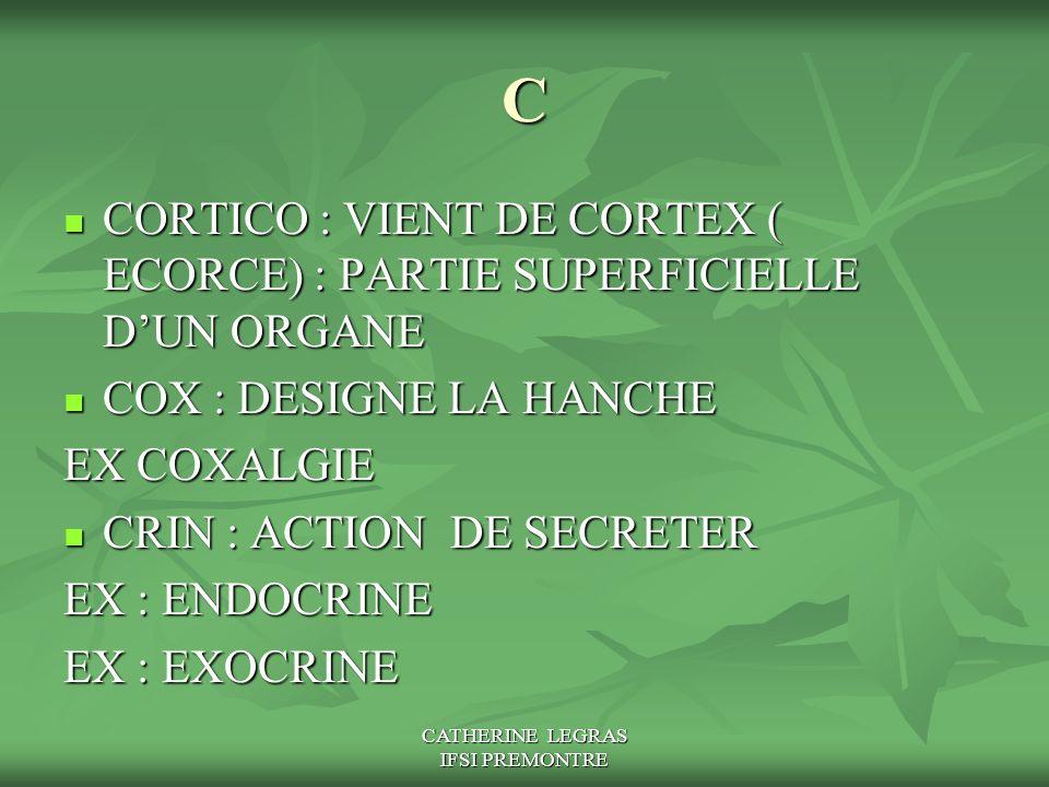 CATHERINE LEGRAS IFSI PREMONTRE C CORTICO : VIENT DE CORTEX ( ECORCE) : PARTIE SUPERFICIELLE D'UN ORGANE CORTICO : VIENT DE CORTEX ( ECORCE) : PARTIE