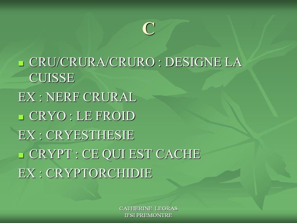 CATHERINE LEGRAS IFSI PREMONTRE C CRU/CRURA/CRURO : DESIGNE LA CUISSE CRU/CRURA/CRURO : DESIGNE LA CUISSE EX : NERF CRURAL CRYO : LE FROID CRYO : LE F