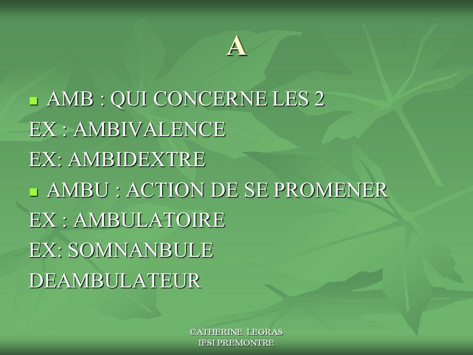 CATHERINE LEGRAS IFSI PREMONTRE A AMB : QUI CONCERNE LES 2 AMB : QUI CONCERNE LES 2 EX : AMBIVALENCE EX: AMBIDEXTRE AMBU : ACTION DE SE PROMENER AMBU