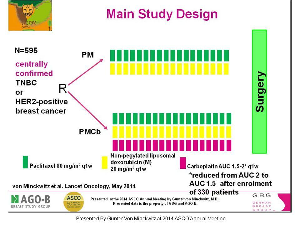 Slide 3 Presented By Gunter Von Minckwitz at 2014 ASCO Annual Meeting