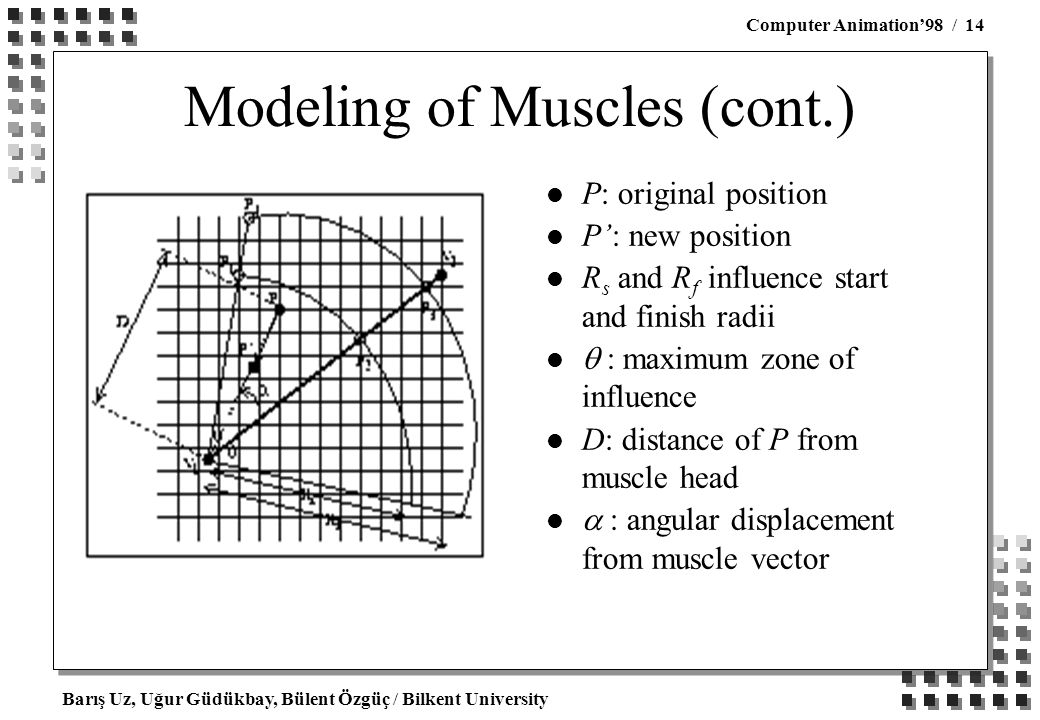 Barış Uz, Uğur Güdükbay, Bülent Özgüç / Bilkent University Computer Animation'98 / 14 Modeling of Muscles (cont.) l P: original position l P': new position l R s and R f influence start and finish radii  maximum zone of influence l D: distance of P from muscle head  : angular displacement from muscle vector