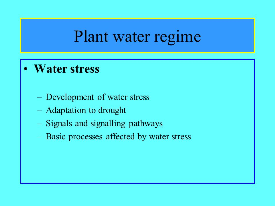 Plant water regime Water stress –Development of water stress –Adaptation to drought –Signals and signalling pathways –Basic processes affected by water stress