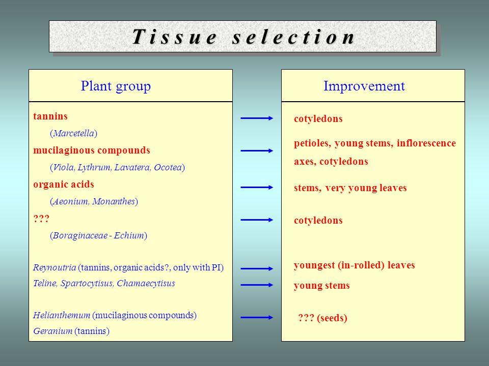 T i s s u e s e l e c t i o n Plant group tannins (Marcetella) mucilaginous compounds (Viola, Lythrum, Lavatera, Ocotea) organic acids (Aeonium, Monan