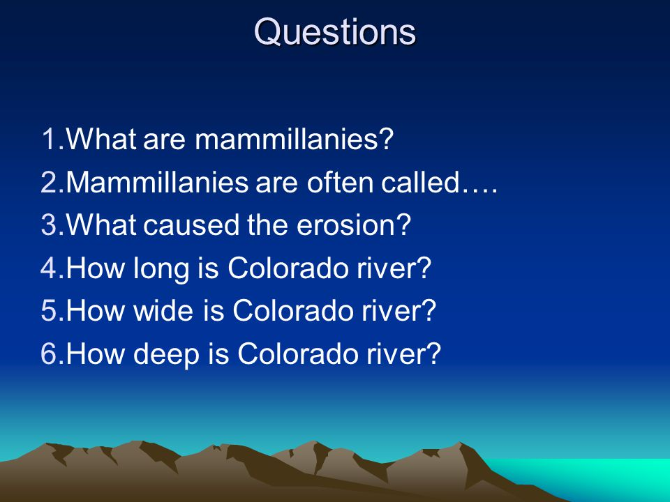 Questions  What are mammillanies.  Mammillanies are often called….
