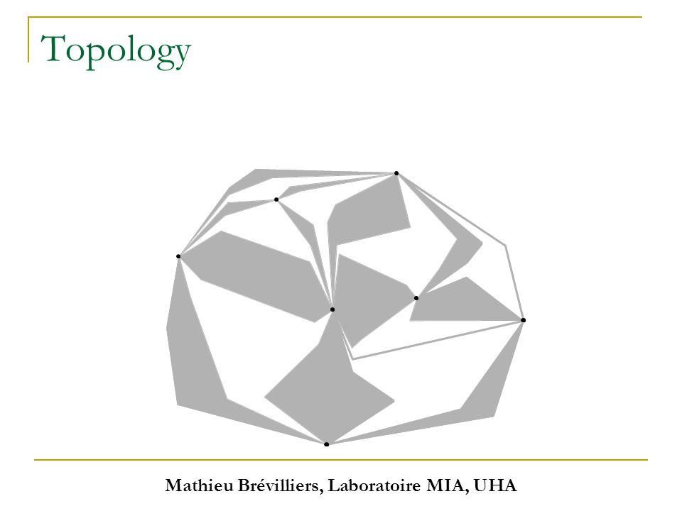 Mathieu Brévilliers, Laboratoire MIA, UHA Topology