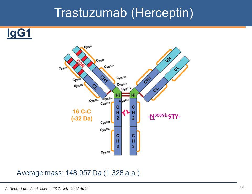 14 Trastuzumab (Herceptin) Average mass: 148,057 Da (1,328 a.a.) IgG1 A.
