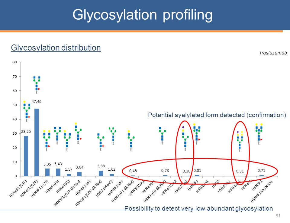 31 Glycosylation profiling Glycosylation distribution Trastuzumab Possibility to detect very low abundant glycosylation Potential syalylated form detected (confirmation)