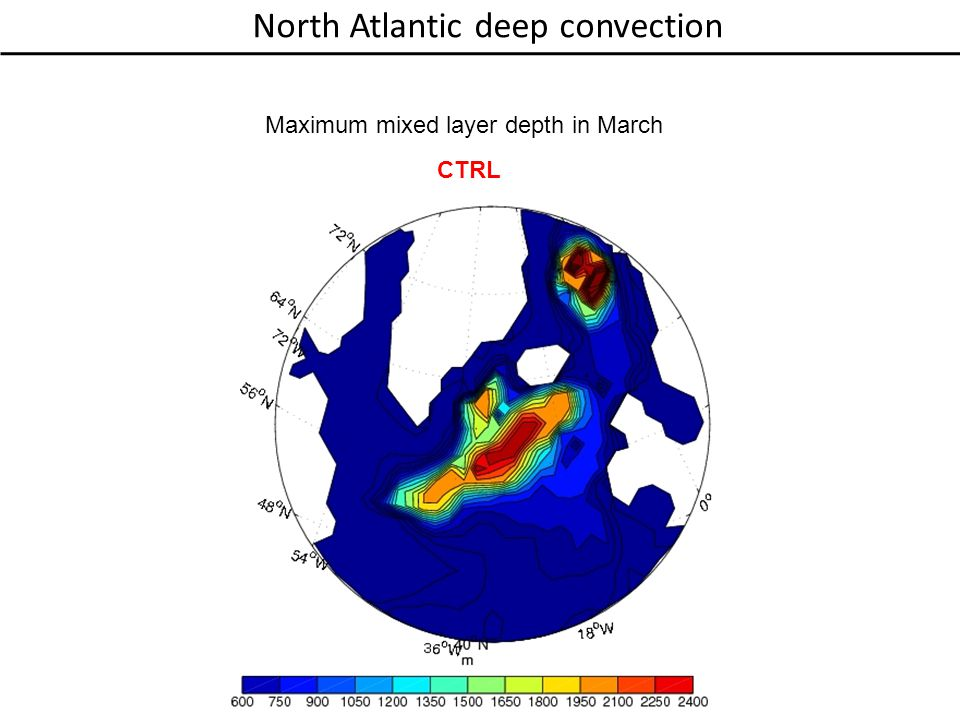 North Atlantic deep convection Maximum mixed layer depth in March CTRL