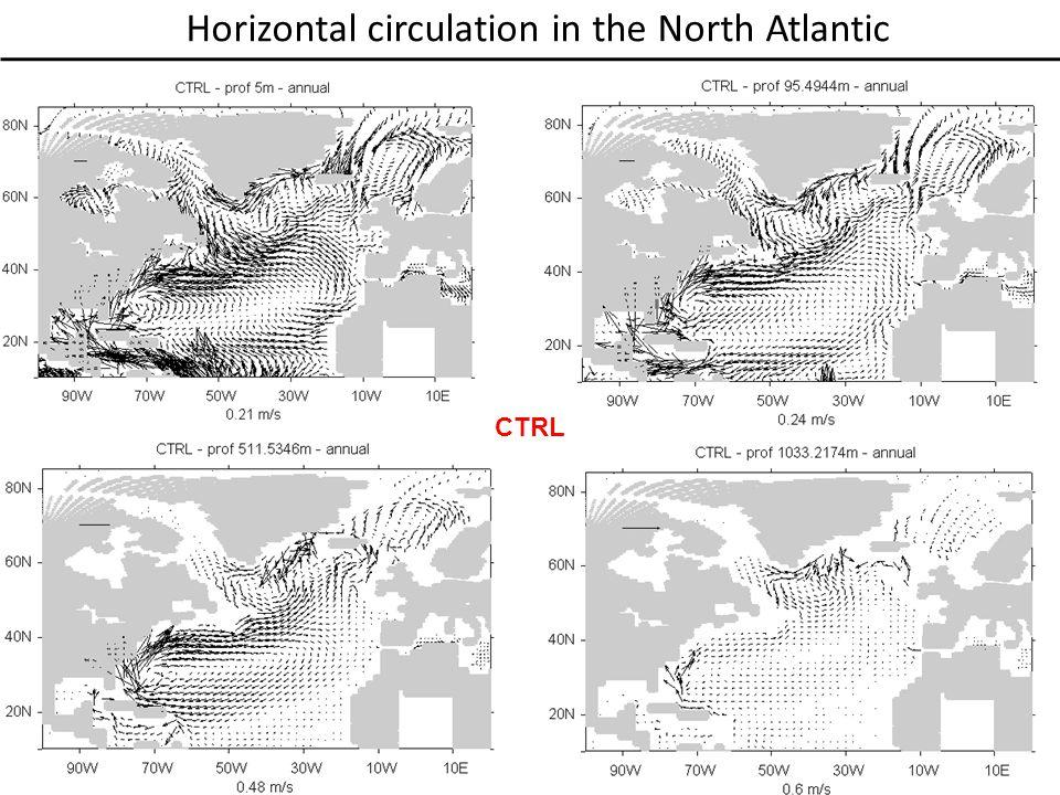 Horizontal circulation in the North Atlantic CTRL