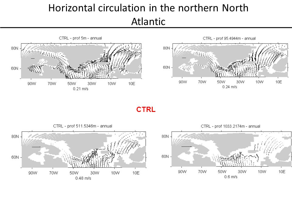 Horizontal circulation in the northern North Atlantic CTRL