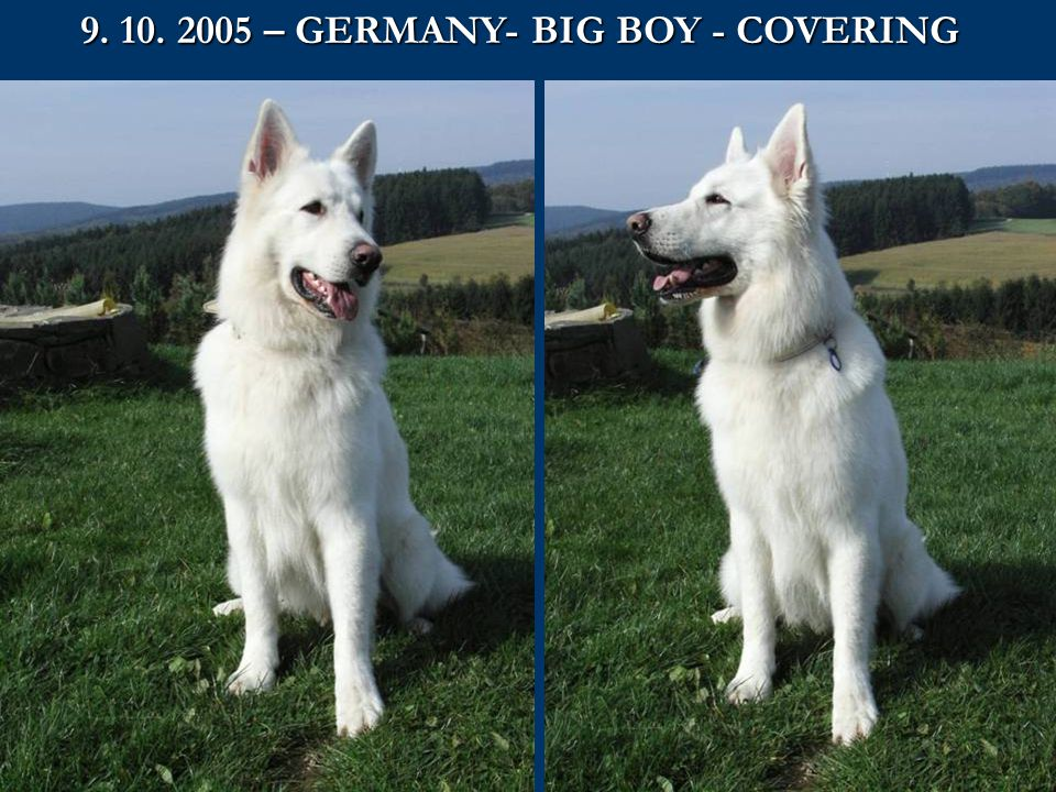 9. 10. 2005 – GERMANY- BIG BOY - COVERING