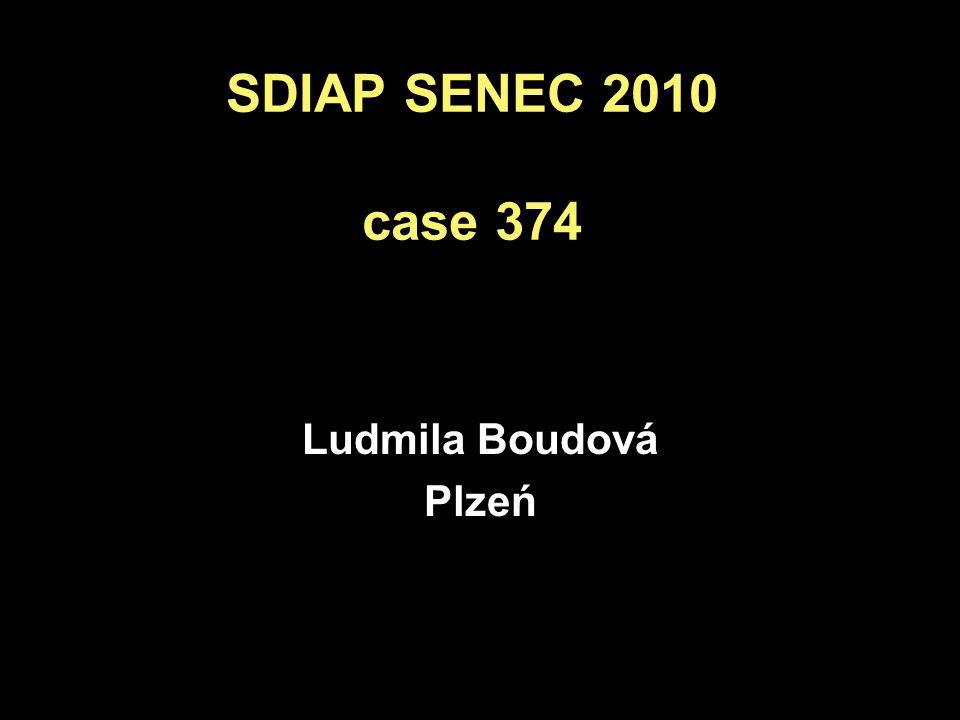 SDIAP SENEC 2010 case 374 Ludmila Boudová Plzeń