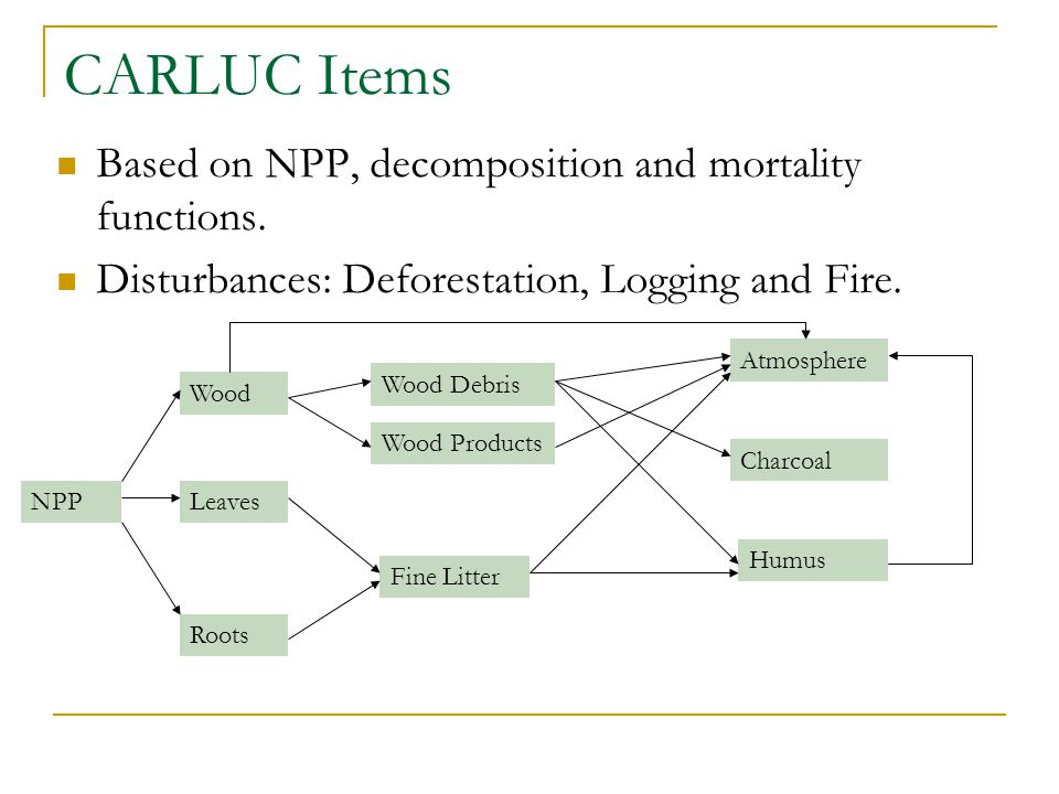 CARLUC Items Based on NPP, decomposition and mortality functions. Disturbances: Deforestation, Logging and Fire. NPP Wood Leaves Roots Charcoal Wood D