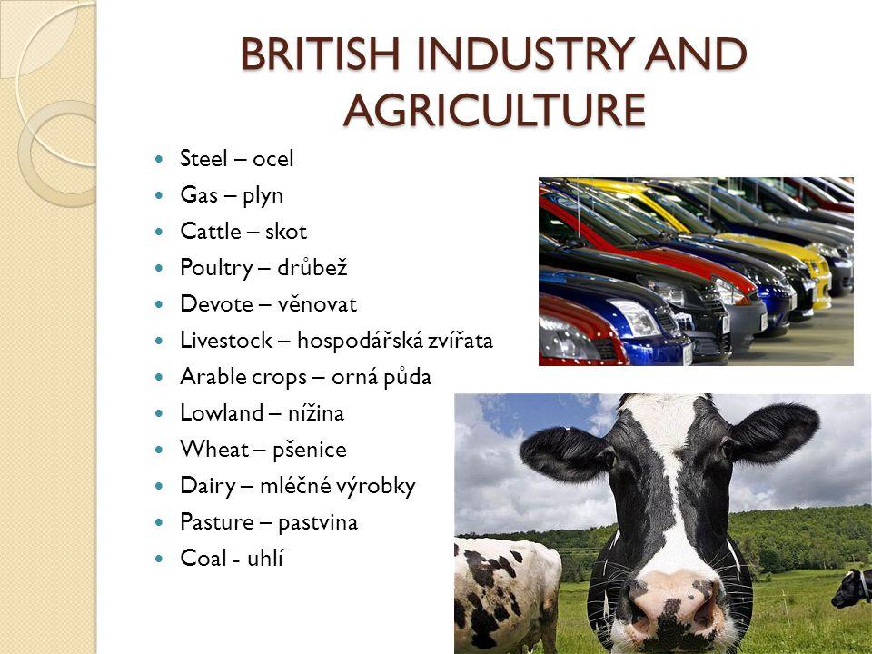 BRITISH INDUSTRY AND AGRICULTURE Steel – ocel Gas – plyn Cattle – skot Poultry – drůbež Devote – věnovat Livestock – hospodářská zvířata Arable crops – orná půda Lowland – nížina Wheat – pšenice Dairy – mléčné výrobky Pasture – pastvina Coal - uhlí