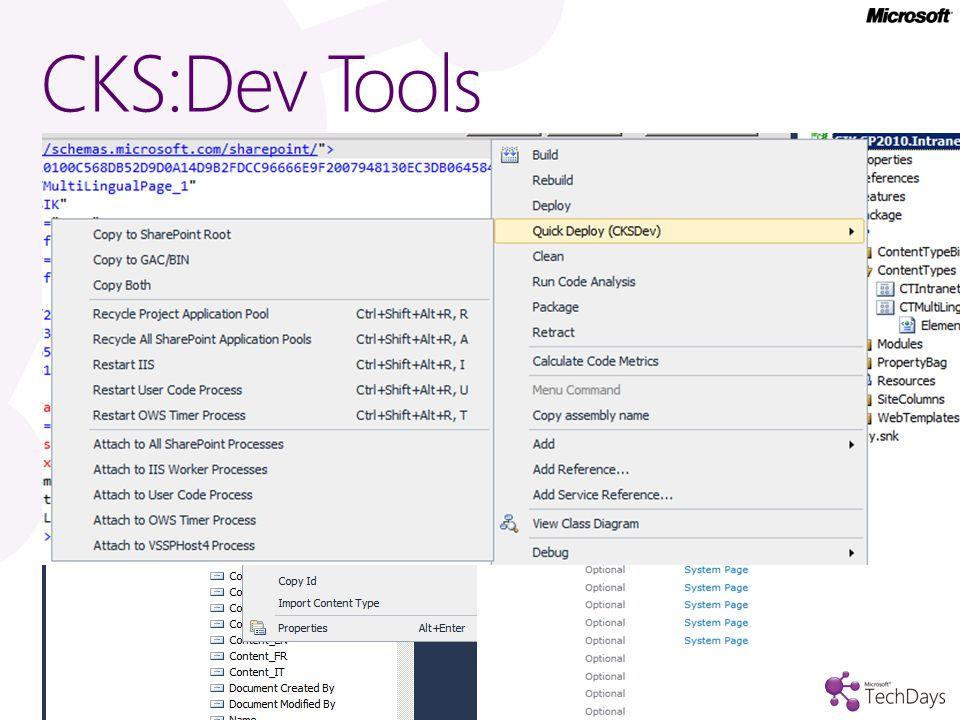 CKS:Dev Tools