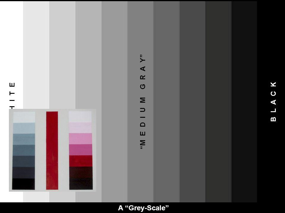 A Grey-Scale M E D I U M G R A Y W H I T E B L A C K