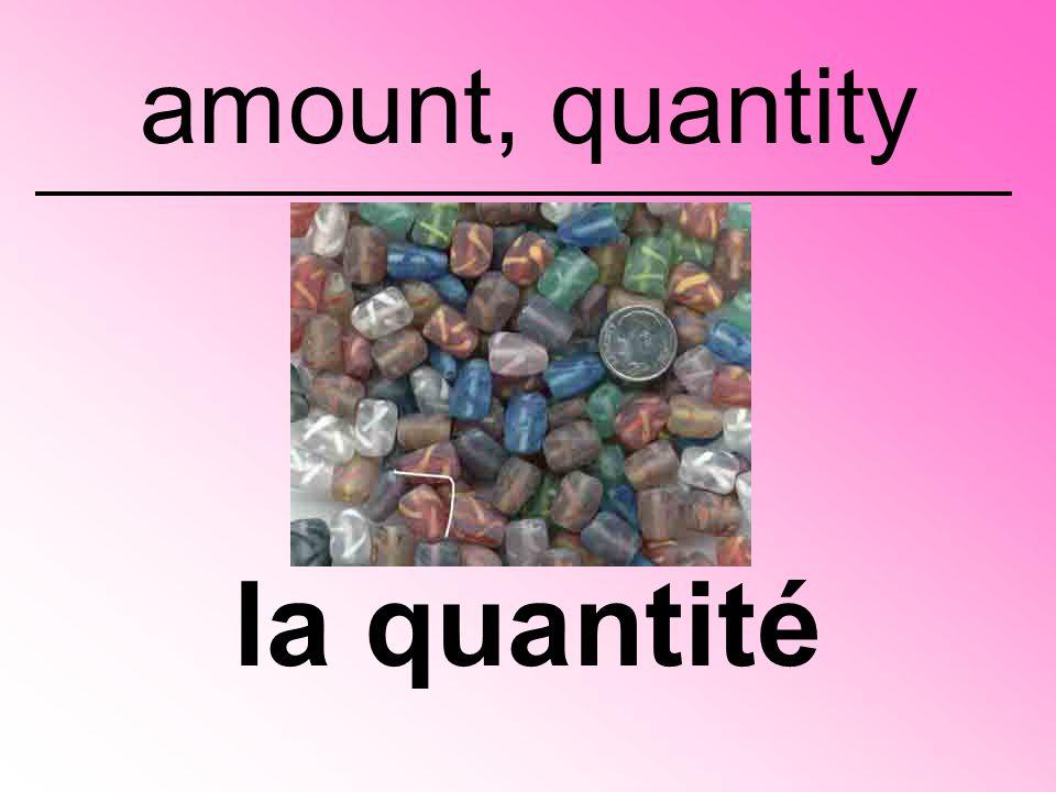 la quantité amount, quantity