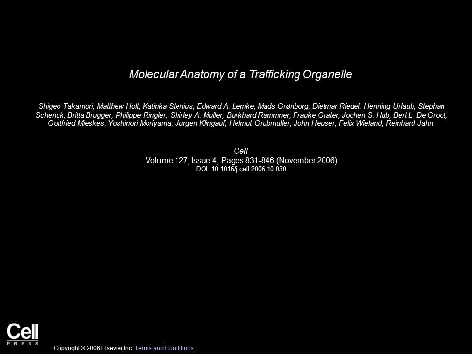 Molecular Anatomy of a Trafficking Organelle Shigeo Takamori, Matthew Holt, Katinka Stenius, Edward A.