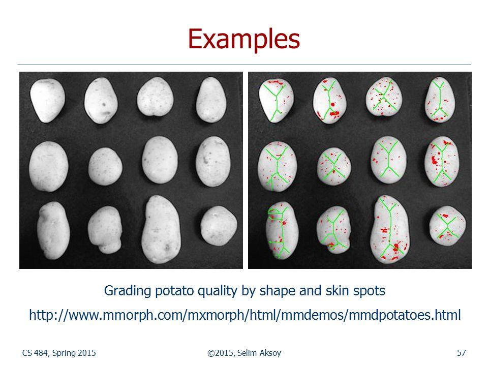 CS 484, Spring 2015©2015, Selim Aksoy57 Examples Grading potato quality by shape and skin spots http://www.mmorph.com/mxmorph/html/mmdemos/mmdpotatoes