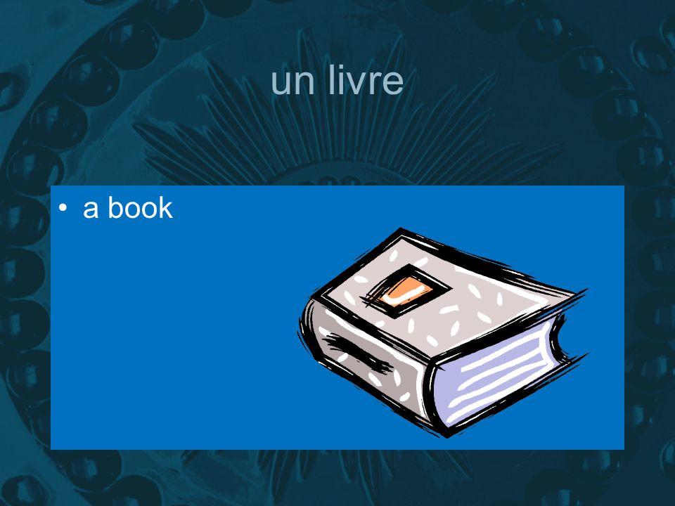 un livre a book