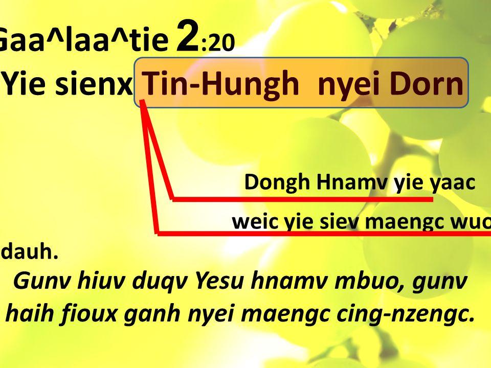 Yie sienx Tin-Hungh nyei Dorn Dongh Hnamv yie yaac weic yie siev maengc wuov dauh.