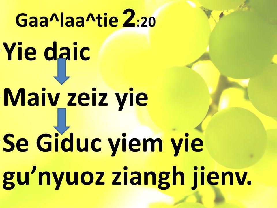 Gaa^laa^tie 2 :20 Yie daic Maiv zeiz yie Se Giduc yiem yie gu'nyuoz ziangh jienv.