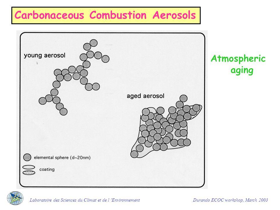 Carbonaceous Combustion Aerosols morphology fresh diesel microsoots Laboratoire des Sciences du Climat et de l 'Environnement Durando ECOC workshop, March 2003 Biomass burning particles Courtesy of A.