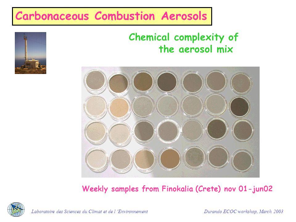 Carbonaceous Combustion Aerosols Chemical complexity of the aerosol mix Laboratoire des Sciences du Climat et de l 'Environnement Durando ECOC workshop, March 2003 Biomass burning aerosols (savanna fires)