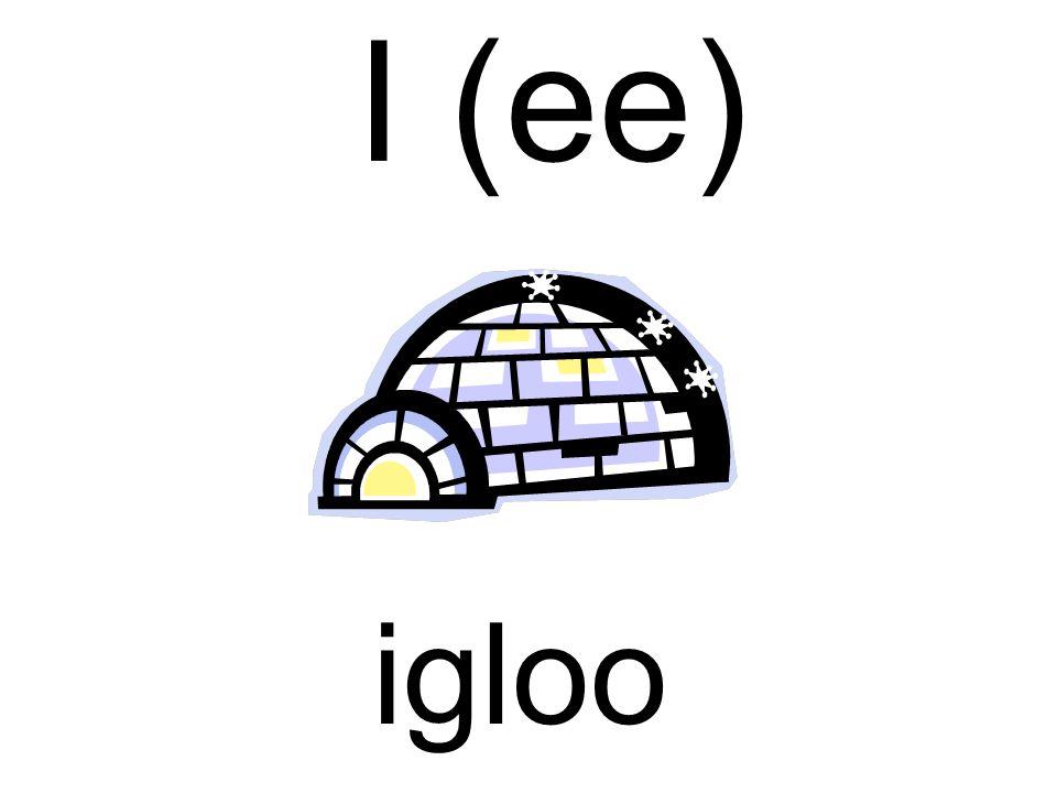 I (ee) igloo