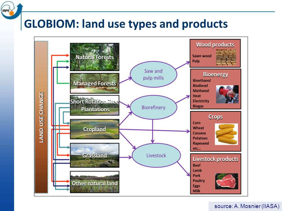 GLOBIOM: land use types and products source: A. Mosnier (IIASA)