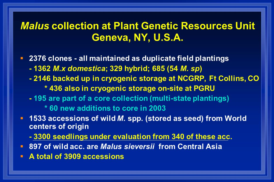 Malus collection at Plant Genetic Resources Unit Geneva, NY, U.S.A.