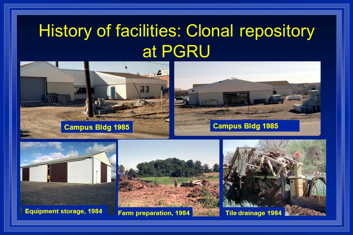 History of facilities: Clonal repository at PGRU Campus Bldg 1985 Equipment storage, 1984 Farm preparation, 1984Tile drainage 1984