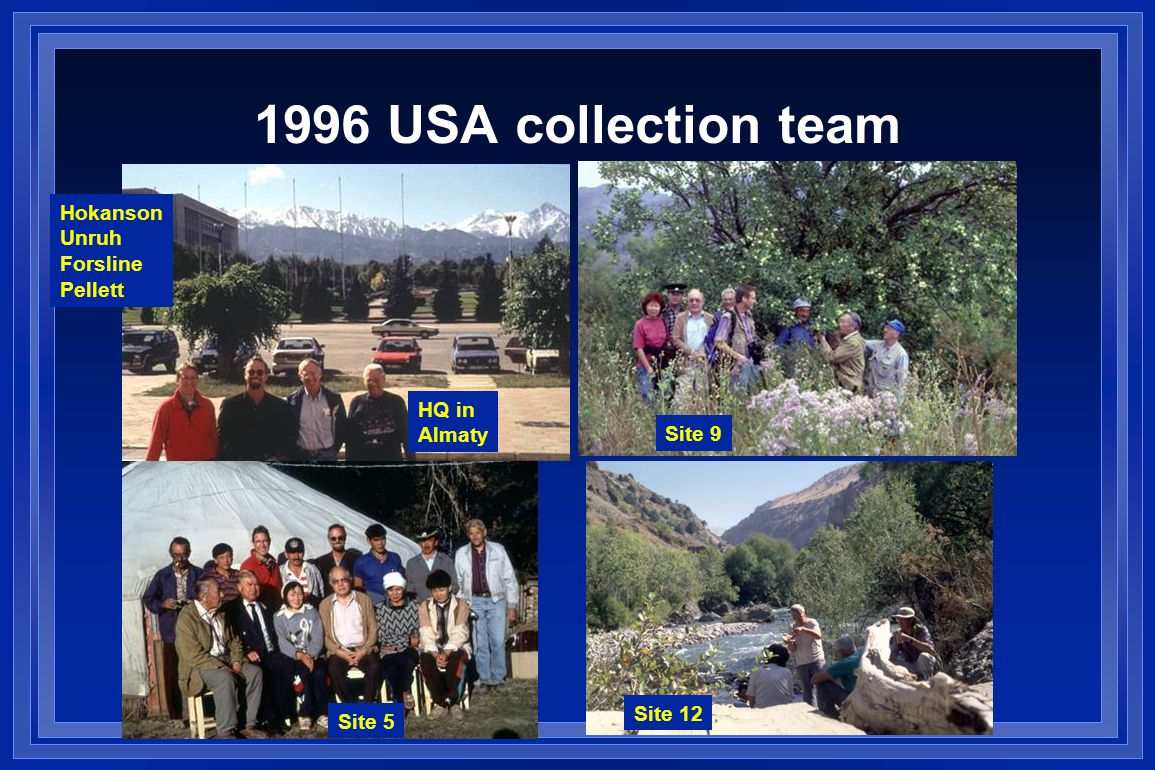 1996 USA collection team Hokanson Unruh Forsline Pellett Site 5 Site 9 Site 12 HQ in Almaty
