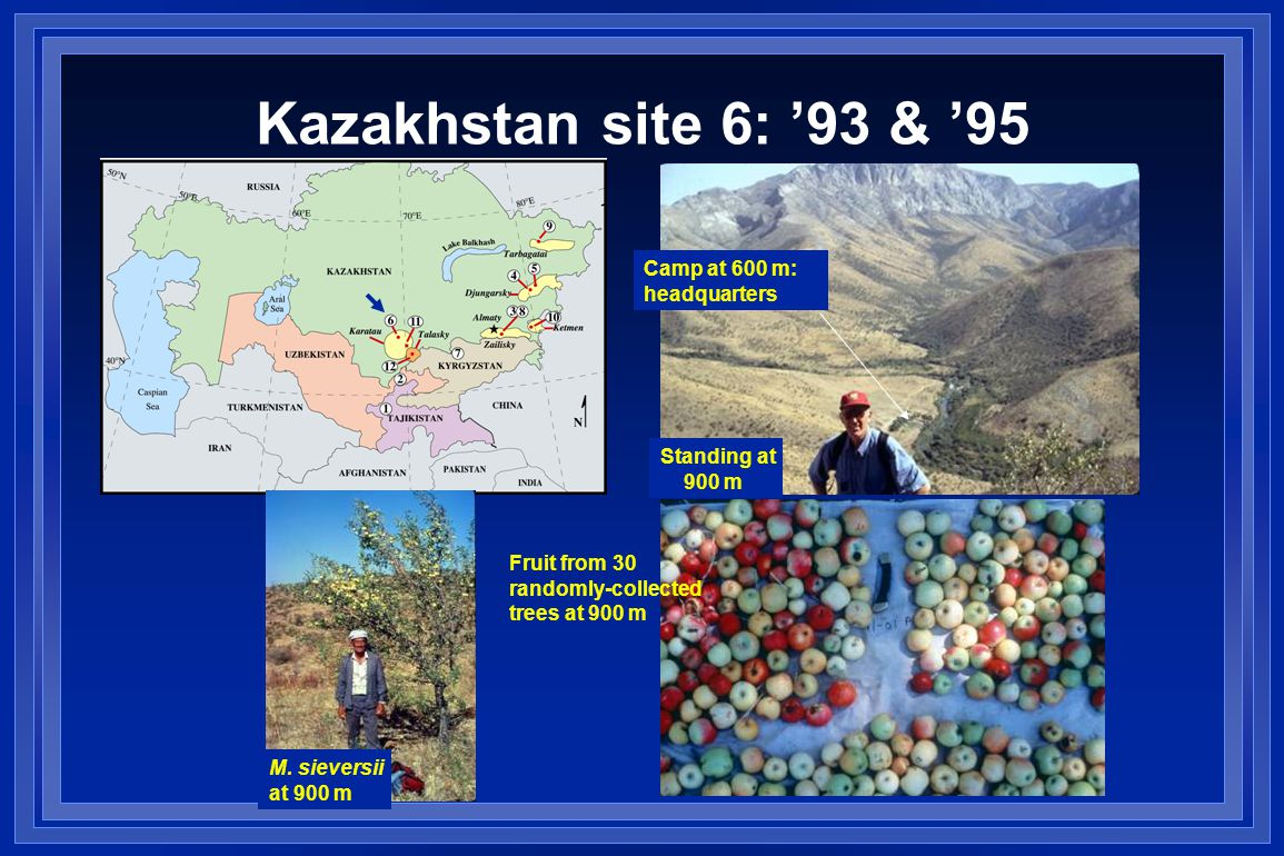 Kazakhstan site 6: '93 & '95 Camp at 600 m: headquarters Standing at 900 m M.