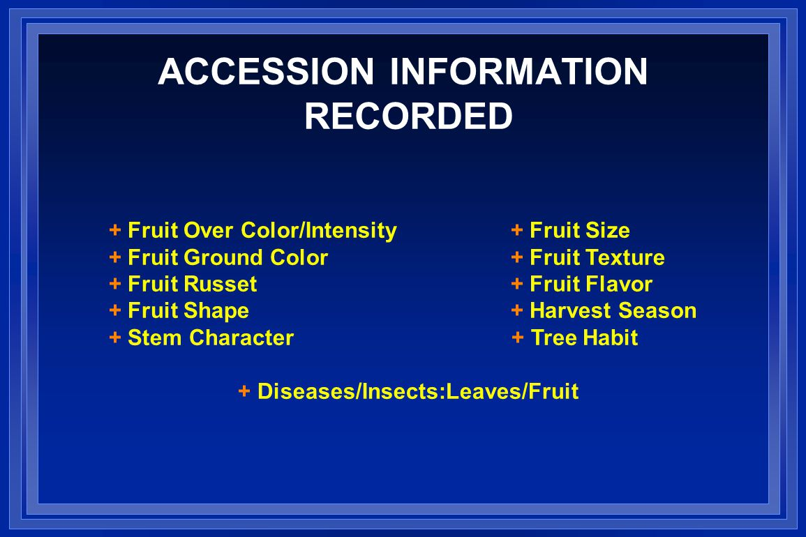ACCESSION INFORMATION RECORDED + Fruit Over Color/Intensity+ Fruit Size + Fruit Ground Color+ Fruit Texture + Fruit Russet+ Fruit Flavor + Fruit Shape+ Harvest Season + Stem Character + Tree Habit + Diseases/Insects:Leaves/Fruit