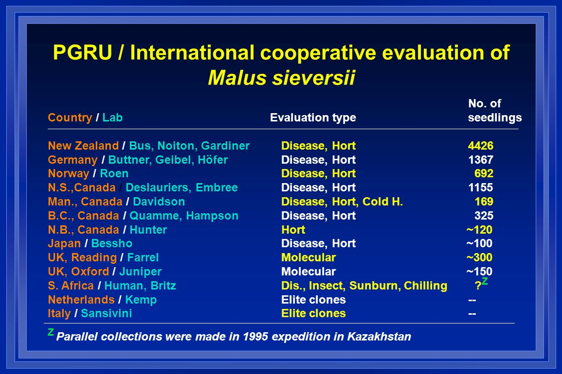 PGRU / International cooperative evaluation of Malus sieversii No.