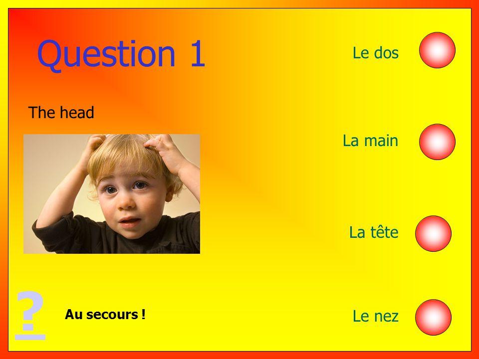 Question 1 Le dos La main La tête Le nez Au secours ! ? The head