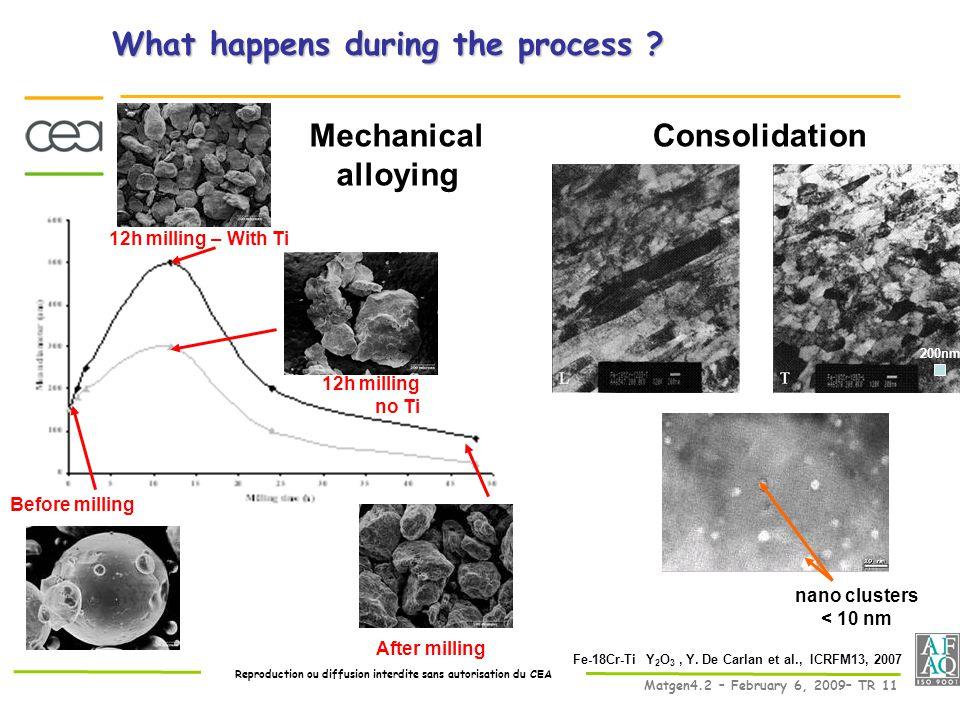 Reproduction ou diffusion interdite sans autorisation du CEA Matgen4.2 – February 6, 2009– TR 11 What happens during the process .
