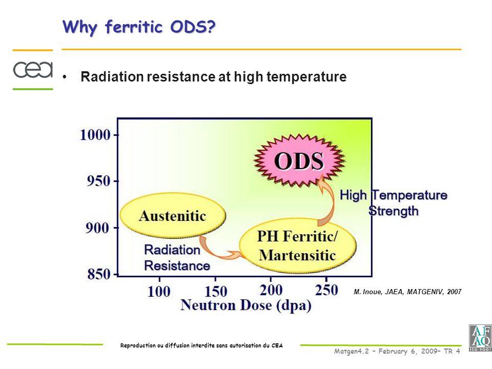 Reproduction ou diffusion interdite sans autorisation du CEA Matgen4.2 – February 6, 2009– TR 4 Why ferritic ODS.