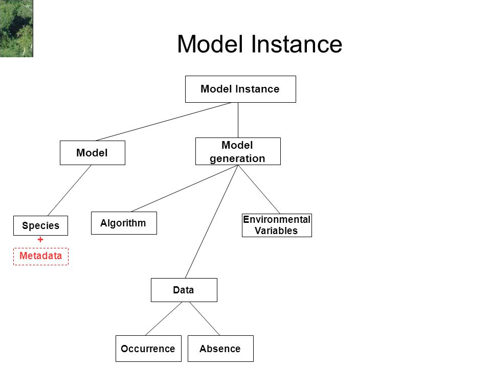 Model Instance Occurrence Environmental Variables Algorithm Model Instance Species Model generation Absence Metadata + Data