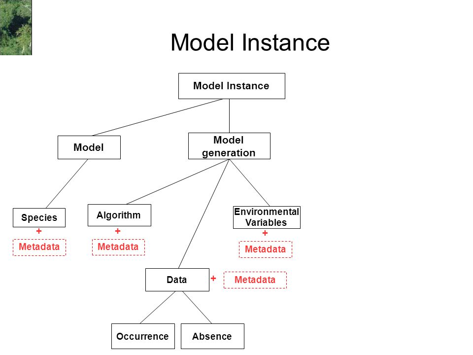 Model Instance Occurrence Environmental Variables Algorithm Model Instance Species Model generation Absence Metadata + + + + Data
