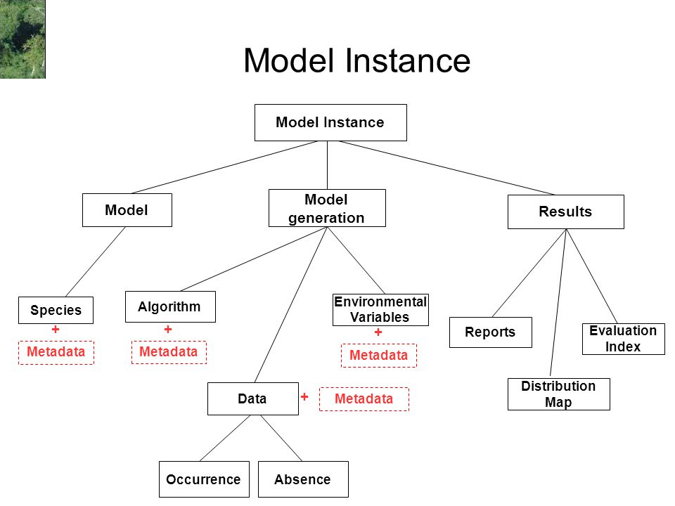 Model Instance Occurrence Environmental Variables Algorithm Distribution Map Evaluation Index Model Instance Species Model generation Absence Reports Results Metadata + + + + Data
