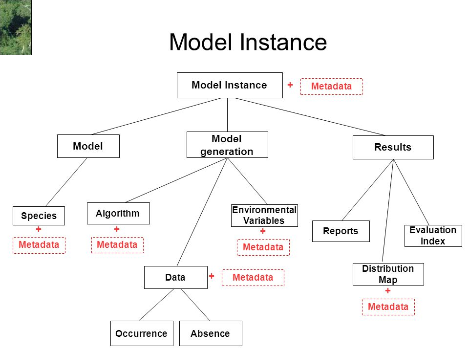 Model Instance Occurrence Environmental Variables Algorithm Distribution Map Evaluation Index Metadata + + Model Instance Species Model generation Absence Reports Results Metadata + + + + Data