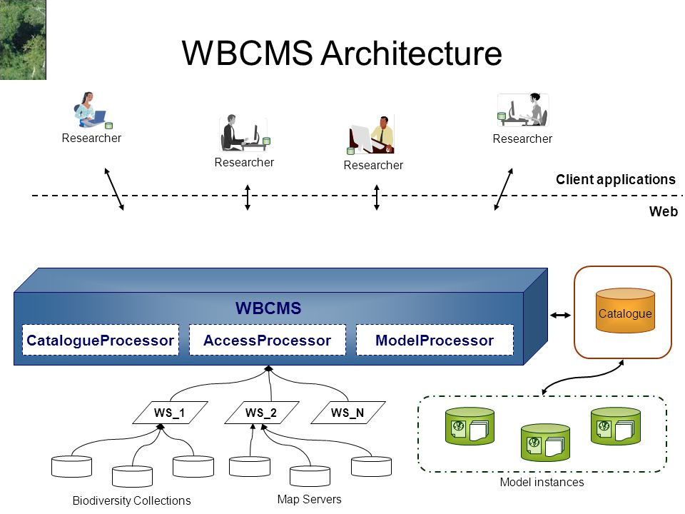 WBCMS Architecture Web Client applications Researcher Model instances Biodiversity Collections WS_2WS_N Map Servers WS_1 Catalogue WBCMS ModelProcessorAccessProcessorCatalogueProcessor