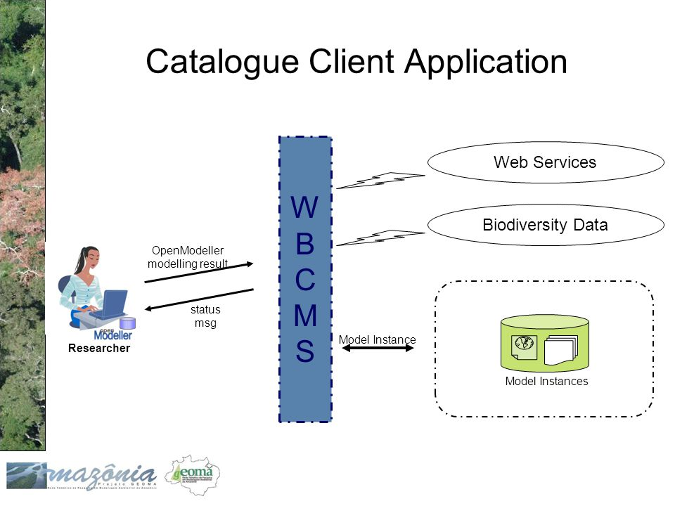 Catalogue Client Application OpenModeller modelling result status msg Model Instances WBCMSWBCMS Model Instance Web Services Biodiversity Data Researcher