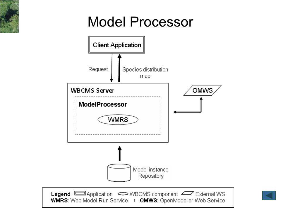 Model Processor